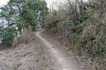 西長尾城跡への道