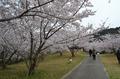 綾歌森林公園